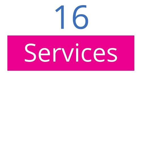 16-bluberyl-services